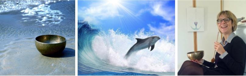 workshop dolfijne dag